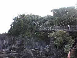 20060920_bridge.jpg