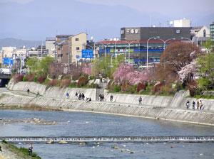 kamogawa2006.jpg